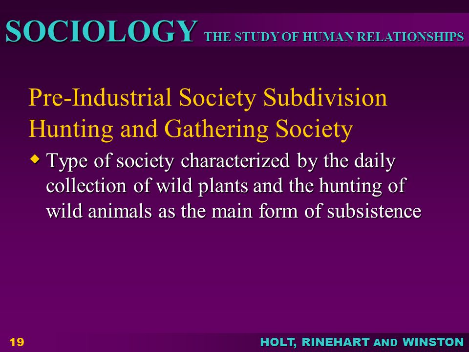 THE STUDY OF HUMAN RELATIONSHIPS SOCIOLOGY HOLT, RINEHART AND WINSTON Pre-Industrial Society Subdivision Hunting and Gathering Society  Type of socie