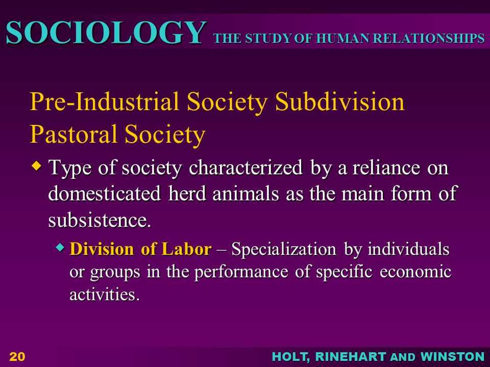 THE STUDY OF HUMAN RELATIONSHIPS SOCIOLOGY HOLT, RINEHART AND WINSTON Pre-Industrial Society Subdivision Pastoral Society  Type of society characteri