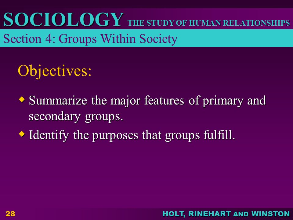 THE STUDY OF HUMAN RELATIONSHIPS SOCIOLOGY HOLT, RINEHART AND WINSTON 28 Objectives:  Summarize the major features of primary and secondary groups. 
