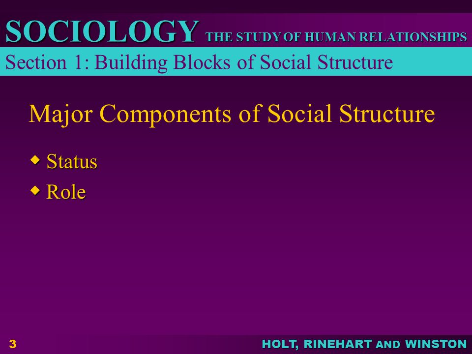 THE STUDY OF HUMAN RELATIONSHIPS SOCIOLOGY HOLT, RINEHART AND WINSTON 3 Major Components of Social Structure  Status  Role Section 1: Building Block