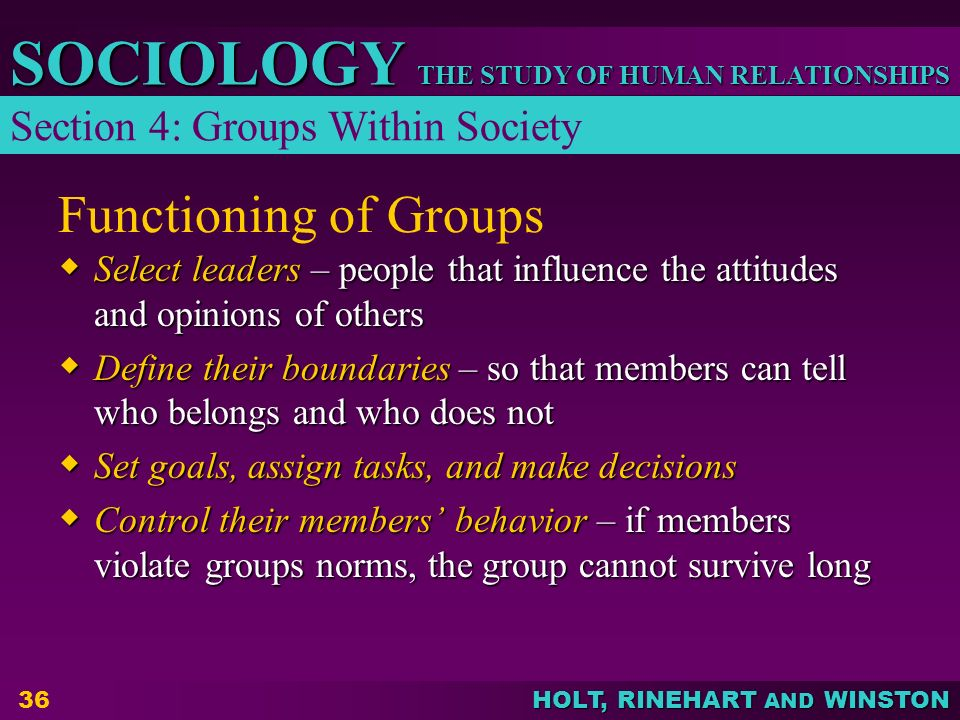 THE STUDY OF HUMAN RELATIONSHIPS SOCIOLOGY HOLT, RINEHART AND WINSTON 36 Functioning of Groups  Select leaders – people that influence the attitudes