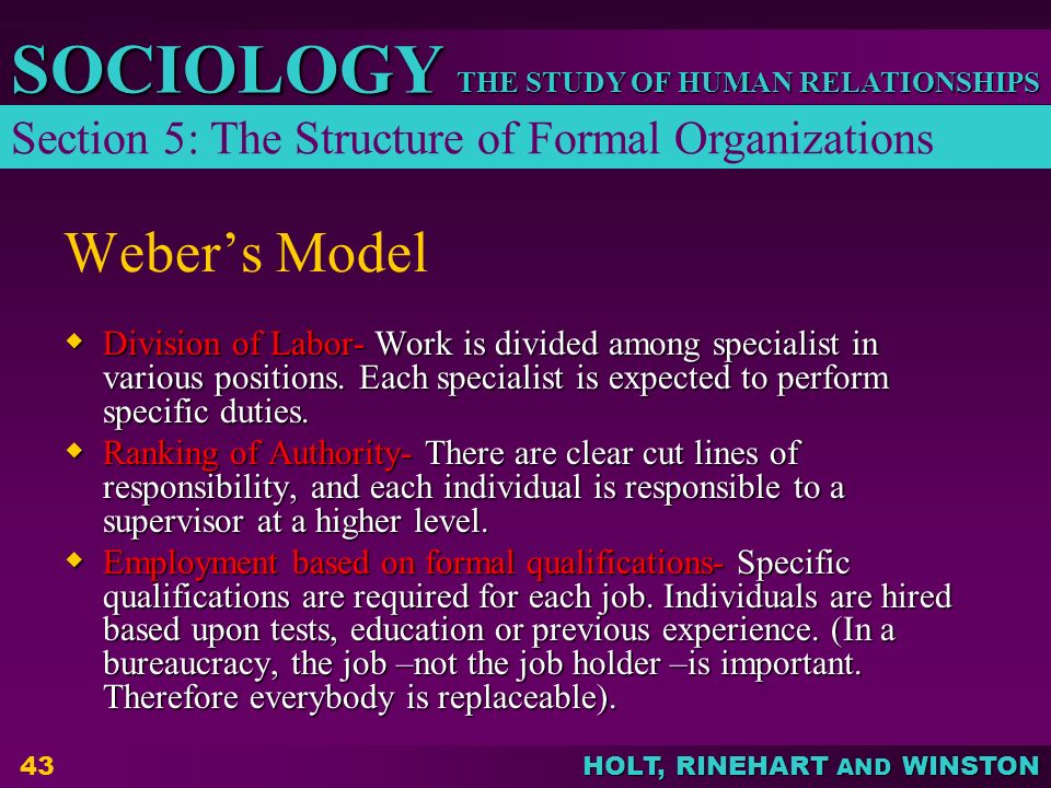 THE STUDY OF HUMAN RELATIONSHIPS SOCIOLOGY HOLT, RINEHART AND WINSTON 43 Weber's Model  Division of Labor- Work is divided among specialist in variou