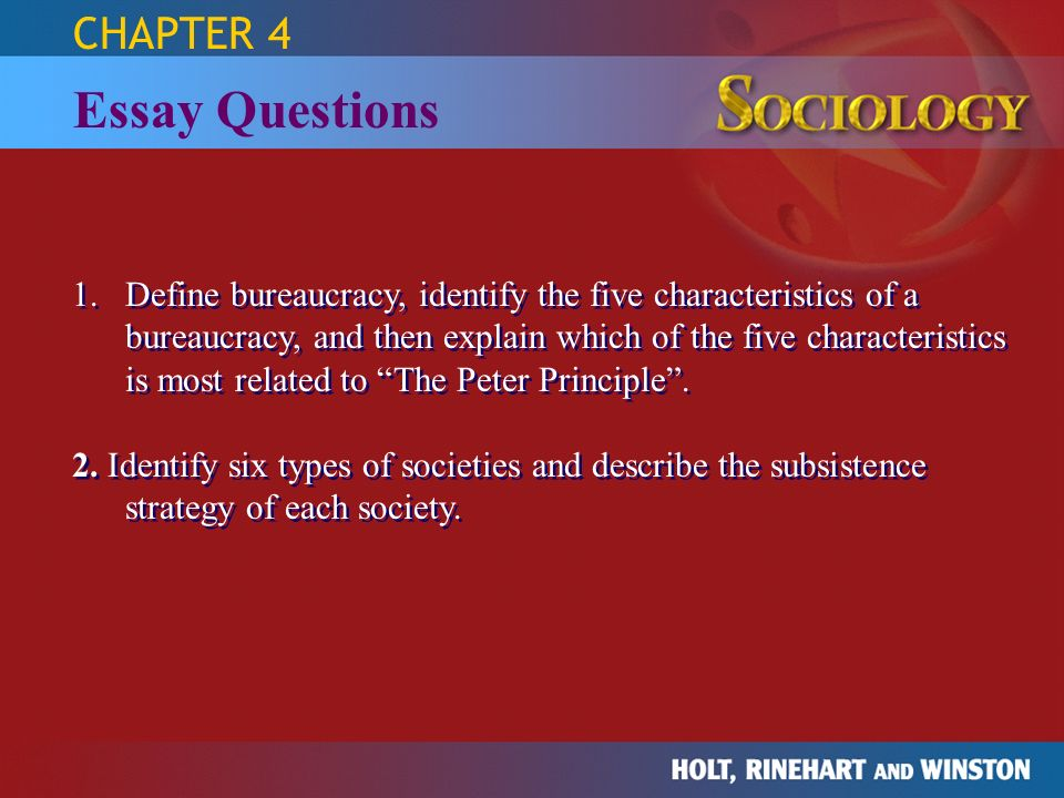 essay bureaucracy  essay on bureaucracy the study of human relationships sociology holt rinehart and the study of human