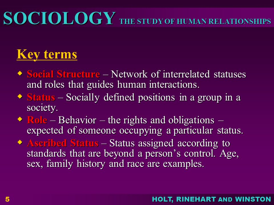 THE STUDY OF HUMAN RELATIONSHIPS SOCIOLOGY HOLT, RINEHART AND WINSTON 5 Key terms  Social Structure – Network of interrelated statuses and roles that