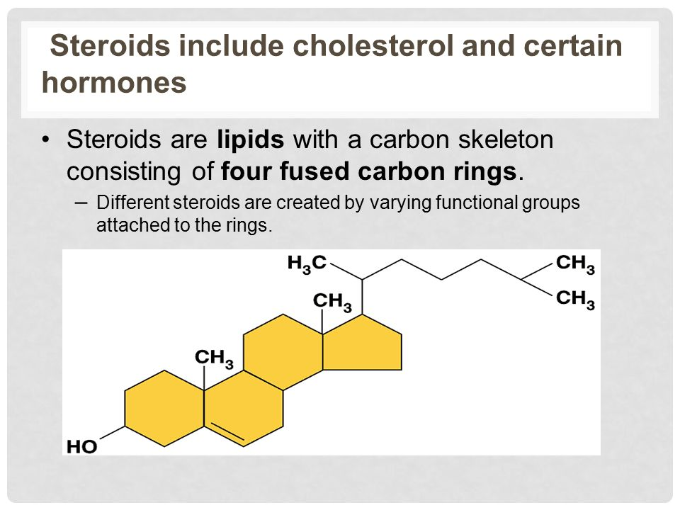 Steroids include cholesterol and certain hormones Steroids are lipids with a carbon skeleton consisting of four fused carbon rings.