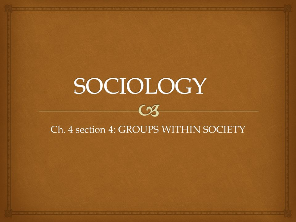 Ch. 4 section 4: GROUPS WITHIN SOCIETY