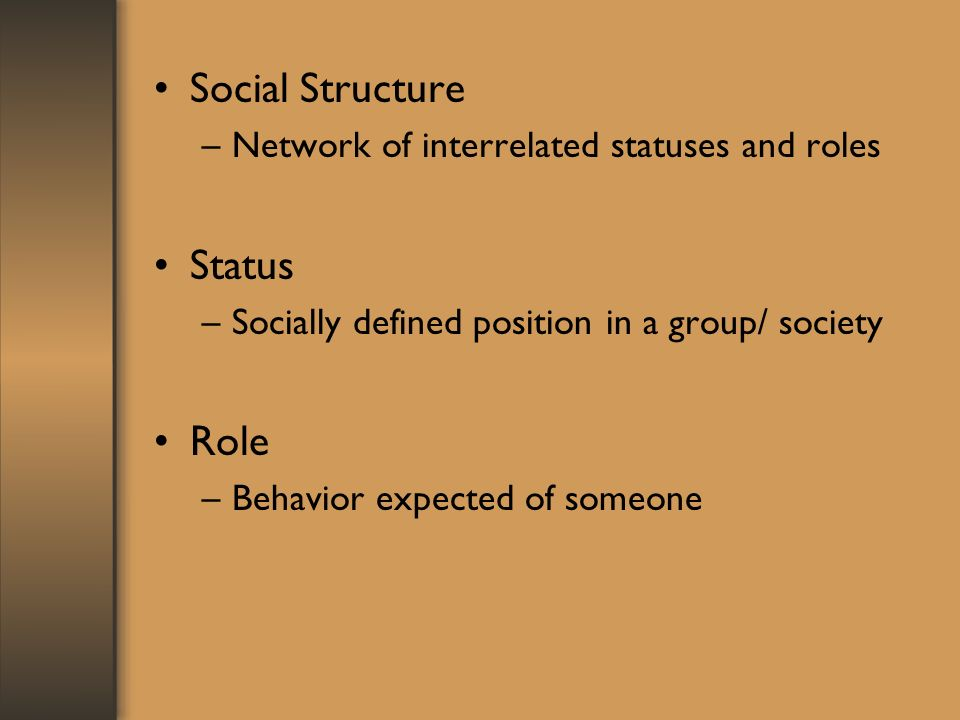 Social Structure –Network of interrelated statuses and roles Status –Socially defined position in a group/ society Role –Behavior expected of someone
