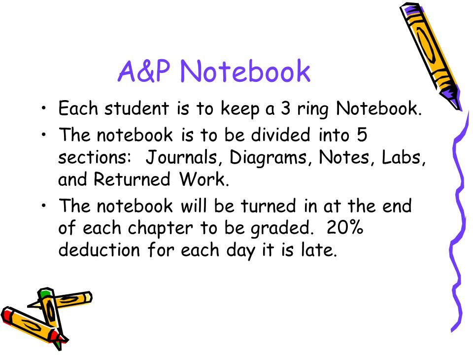 A&P Notebook Each student is to keep a 3 ring Notebook.