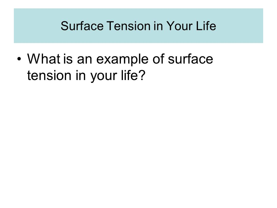 Surface Tension in Your Life What is an example of surface tension in your life