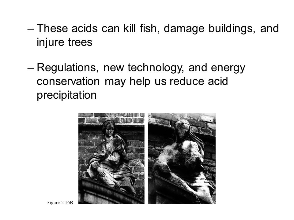 –These acids can kill fish, damage buildings, and injure trees –Regulations, new technology, and energy conservation may help us reduce acid precipitation Figure 2.16B