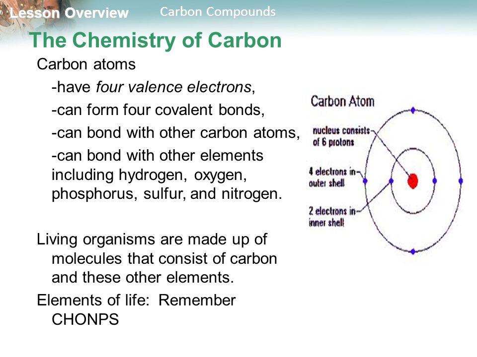 Lesson Overview Lesson Overview Carbon Compounds Lesson Overview ...