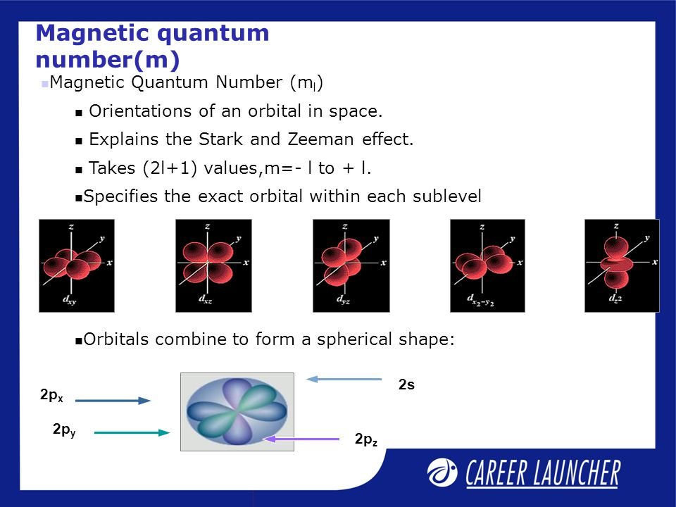 Magnetic quantum number(m) Magnetic Quantum Number (m l ) Orientations of an orbital in space.