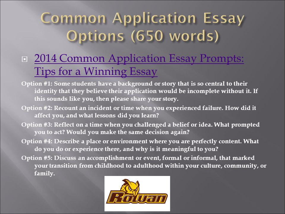 academic writing classification essay examples