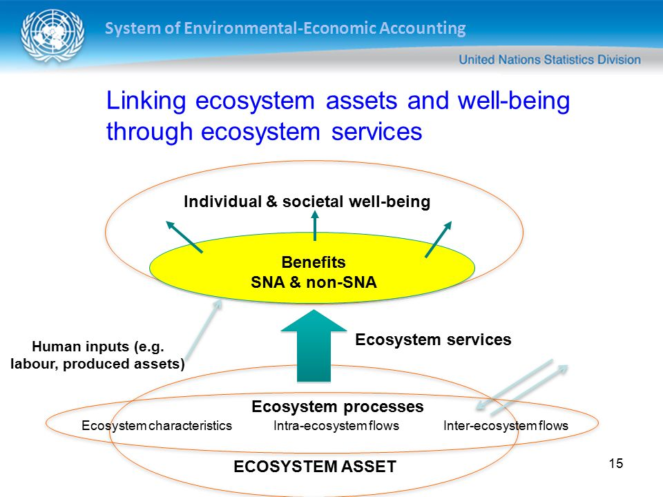 System of Environmental-Economic Accounting 15 Individual & societal well-being Benefits SNA & non-SNA Ecosystem services ECOSYSTEM ASSET Ecosystem characteristicsIntra-ecosystem flowsInter-ecosystem flows Human inputs (e.g.