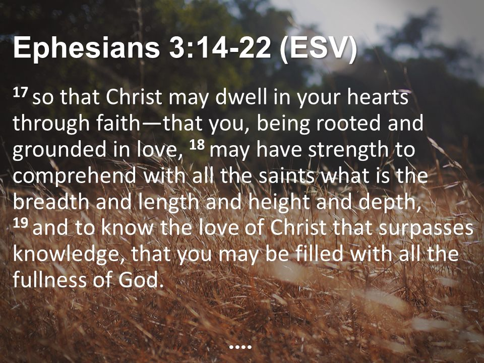Ephesians 3:14-22 (ESV) 17 so that Christ may dwell in your hearts through faith—that you, being rooted and grounded in love, 18 may have strength to comprehend with all the saints what is the breadth and length and height and depth, 19 and to know the love of Christ that surpasses knowledge, that you may be filled with all the fullness of God.