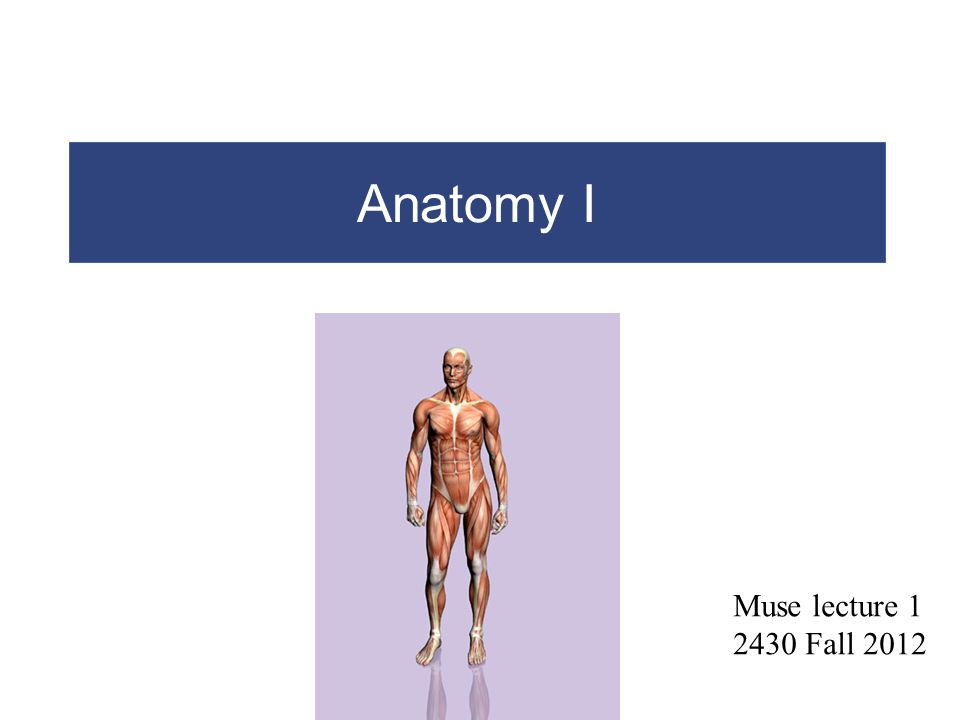 Chapter 1 introduction to human anatomy and physiology ppt on cells