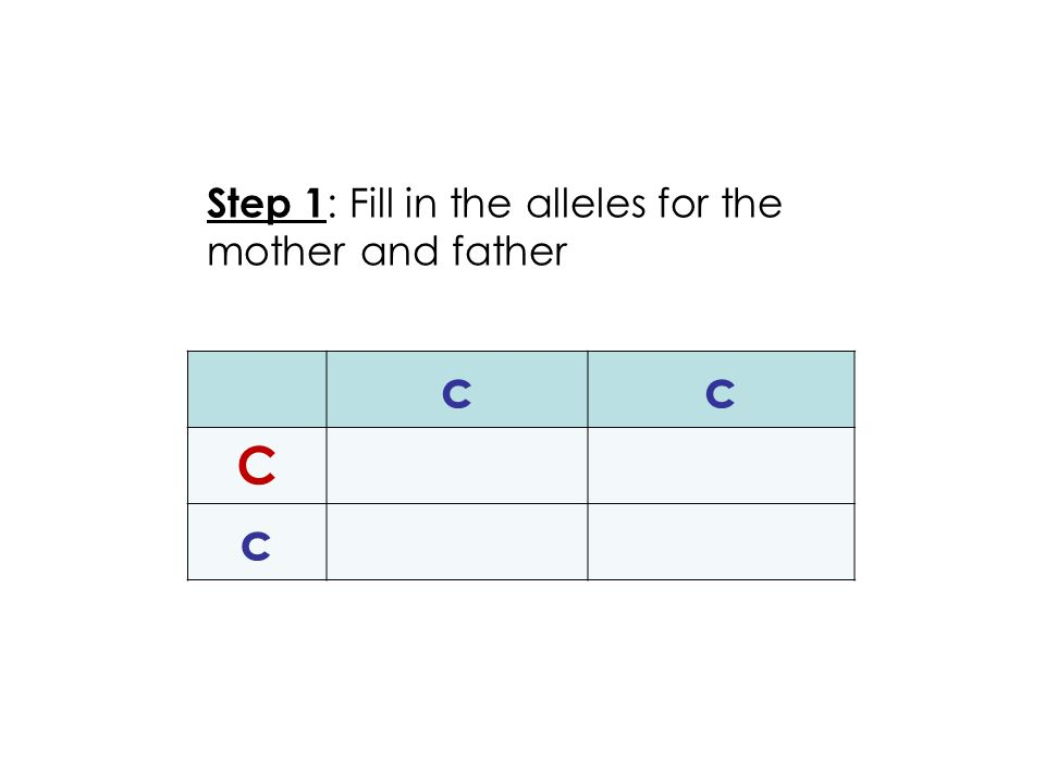 cc C c Step 1 : Fill in the alleles for the mother and father