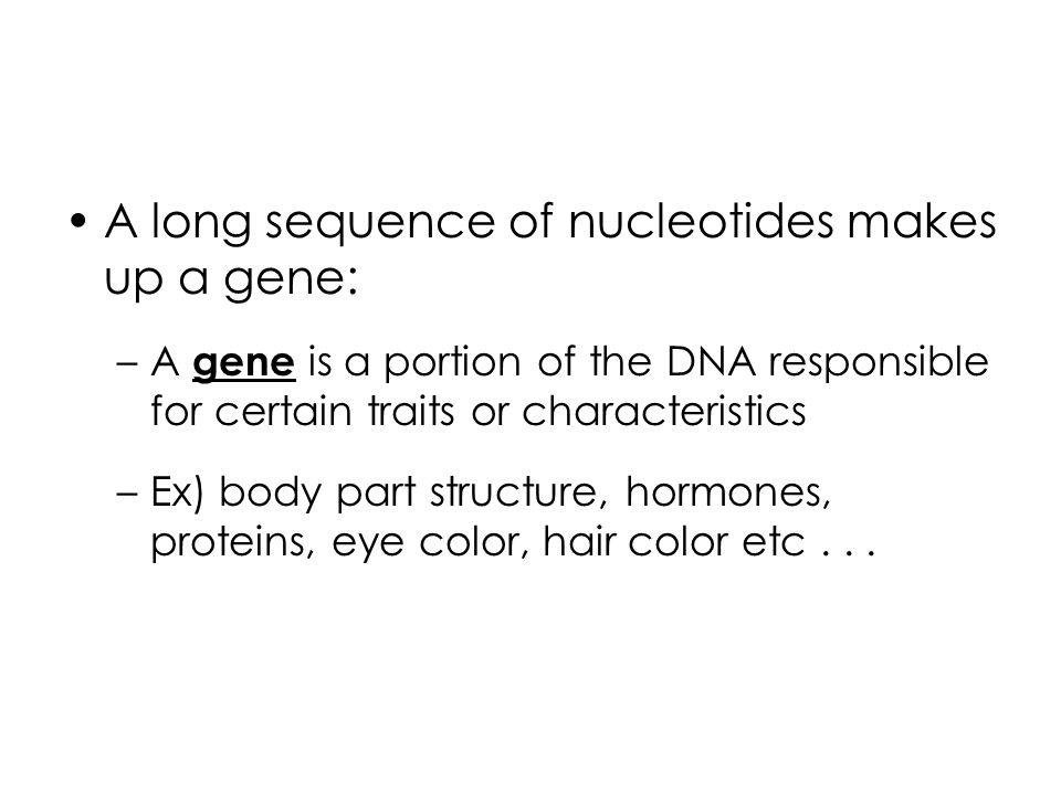 A long sequence of nucleotides makes up a gene: –A gene is a portion of the DNA responsible for certain traits or characteristics –Ex) body part structure, hormones, proteins, eye color, hair color etc...