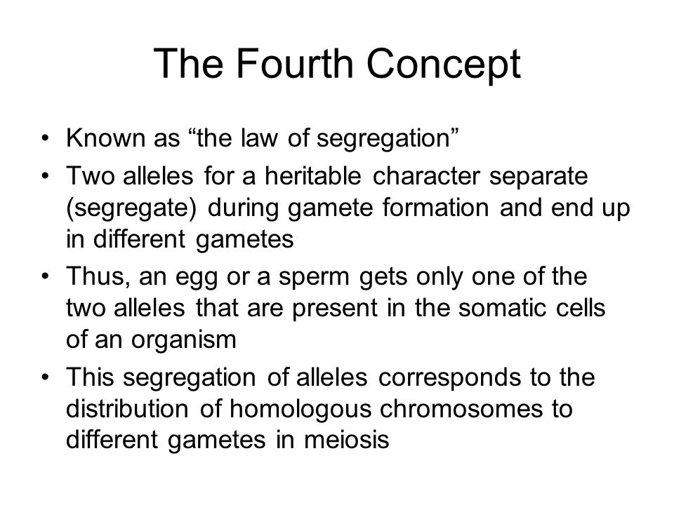 The Fourth Concept Known as the law of segregation Two alleles for a heritable character separate (segregate) during gamete formation and end up in different gametes Thus, an egg or a sperm gets only one of the two alleles that are present in the somatic cells of an organism This segregation of alleles corresponds to the distribution of homologous chromosomes to different gametes in meiosis
