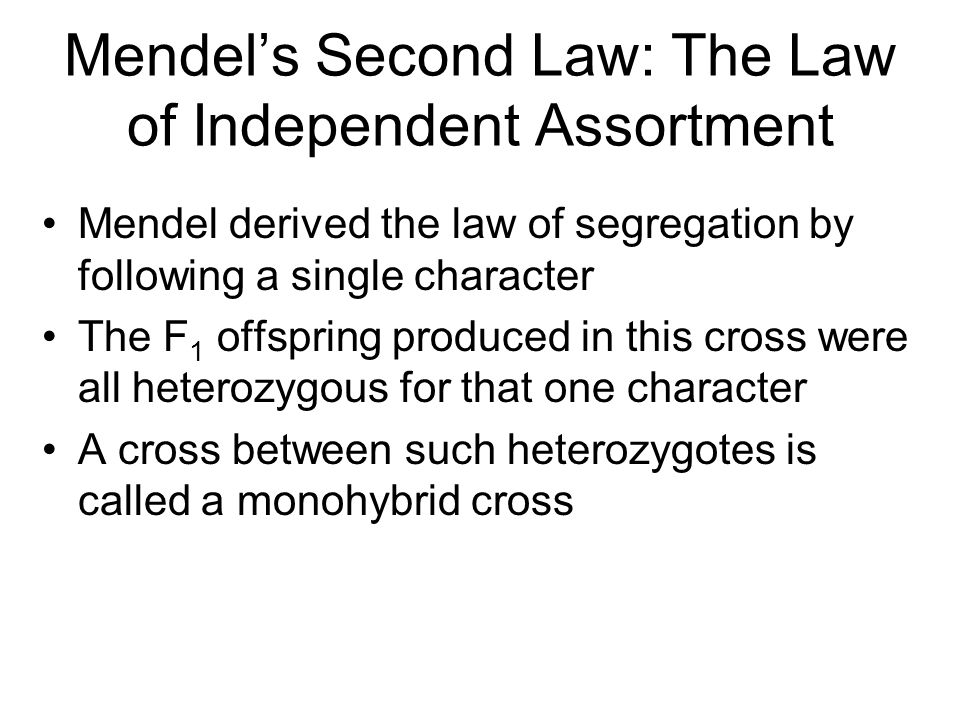 Mendel's Second Law: The Law of Independent Assortment Mendel derived the law of segregation by following a single character The F 1 offspring produced in this cross were all heterozygous for that one character A cross between such heterozygotes is called a monohybrid cross