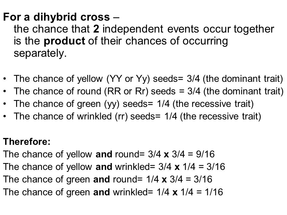 For a dihybrid cross – the chance that 2 independent events occur together is the product of their chances of occurring separately.