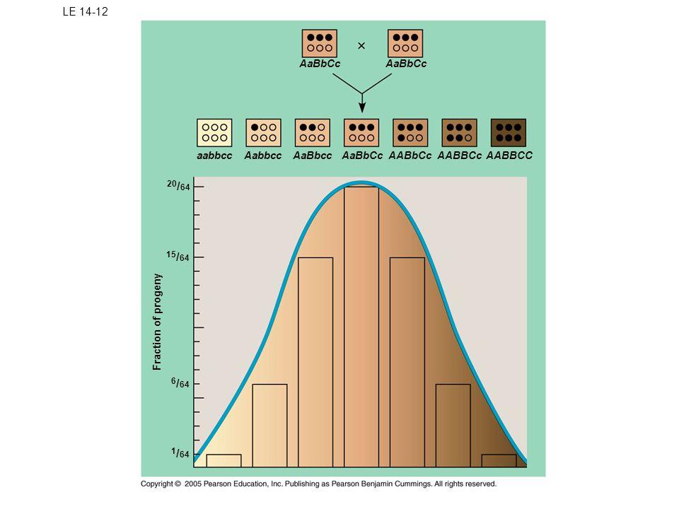 LE 14-12 aabbccAabbccAaBbccAaBbCcAABbCcAABBCcAABBCC AaBbCc 20 / 64 15 / 64 6 / 64 1 / 64 Fraction of progeny
