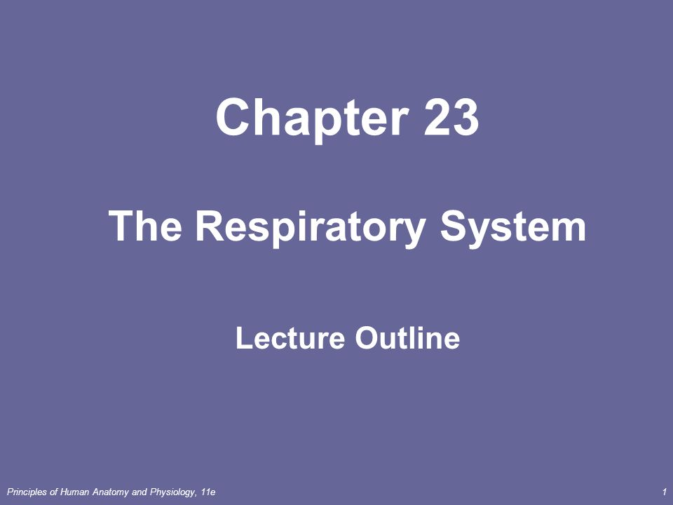 Principles of Human Anatomy and Physiology, 11e1 Chapter 23 The ...