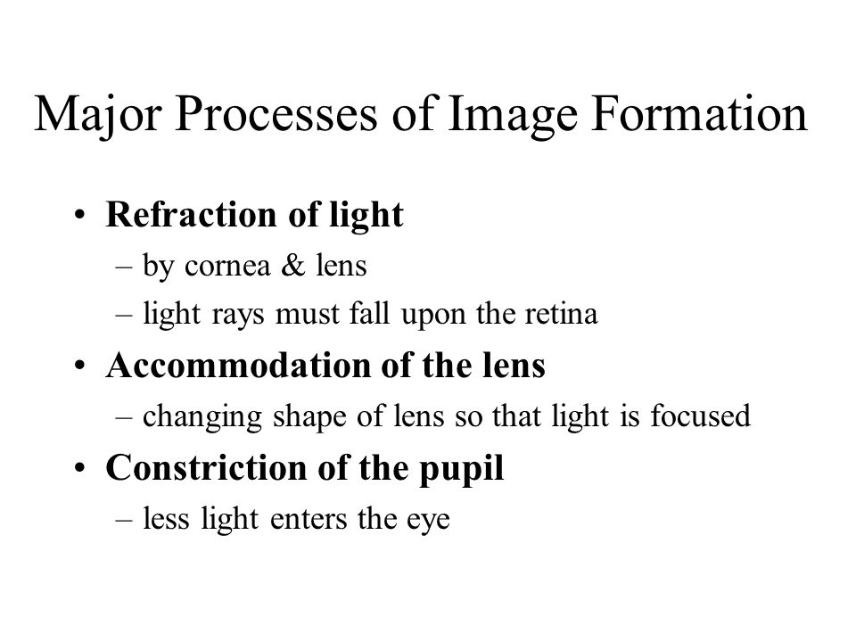 Major Processes of Image Formation Refraction of light –by cornea & lens –light rays must fall upon the retina Accommodation of the lens –changing shape of lens so that light is focused Constriction of the pupil –less light enters the eye