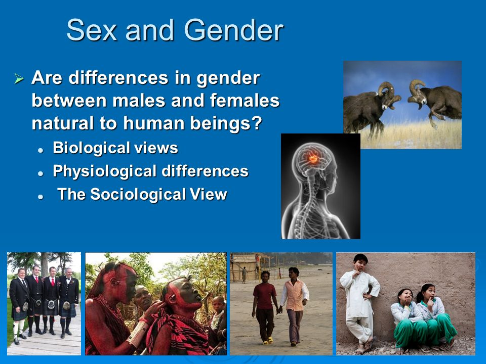 Sex and Gender  Are differences in gender between males and females natural to human beings.
