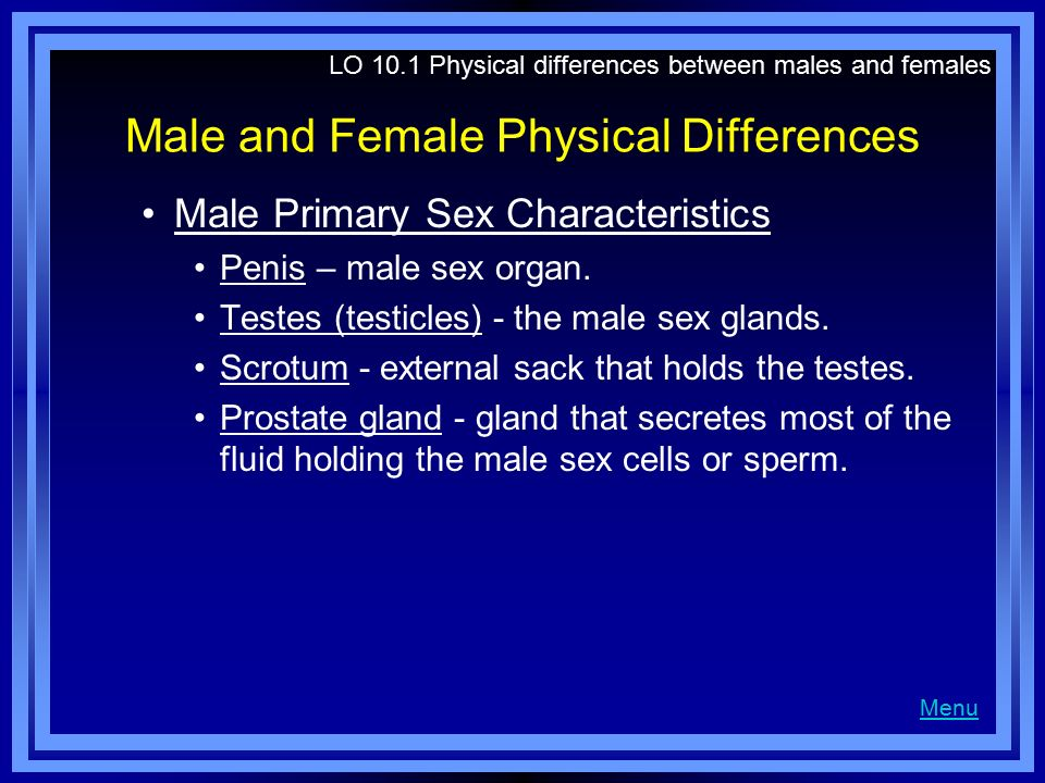 Male and Female Physical Differences Male Primary Sex Characteristics Penis – male sex organ. Testes (testicles) - the male sex glands. Scrotum - exte