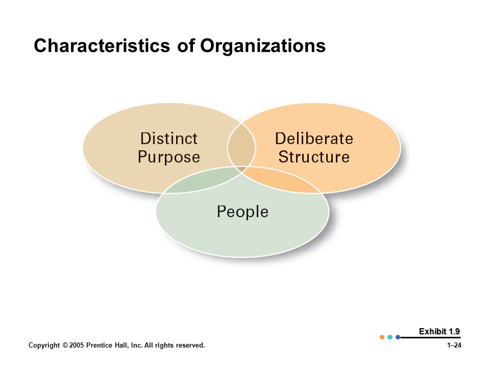 Copyright © 2005 Prentice Hall, Inc. All rights reserved.1–24 Exhibit 1.9 Characteristics of Organizations