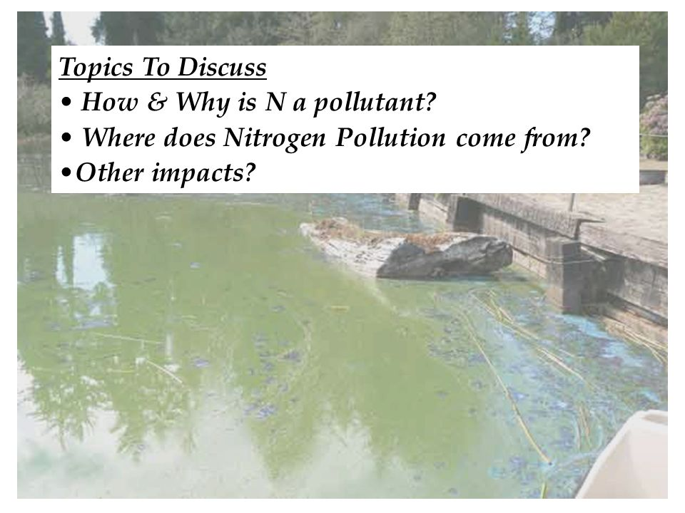 5 Topics To Discuss How & Why is N a pollutant. Where does Nitrogen Pollution come from.