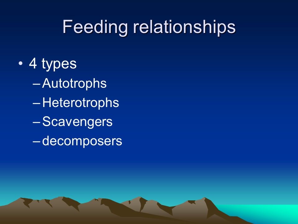 Feeding relationships 4 types –Autotrophs –Heterotrophs –Scavengers –decomposers