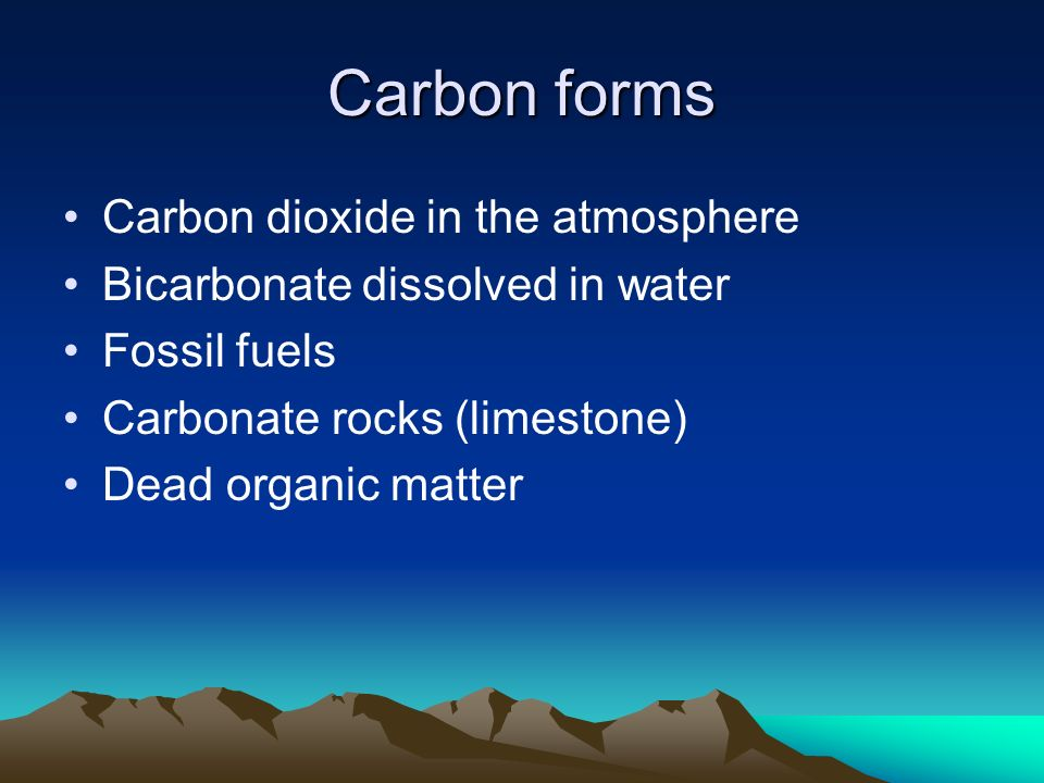 Carbon forms Carbon dioxide in the atmosphere Bicarbonate dissolved in water Fossil fuels Carbonate rocks (limestone) Dead organic matter