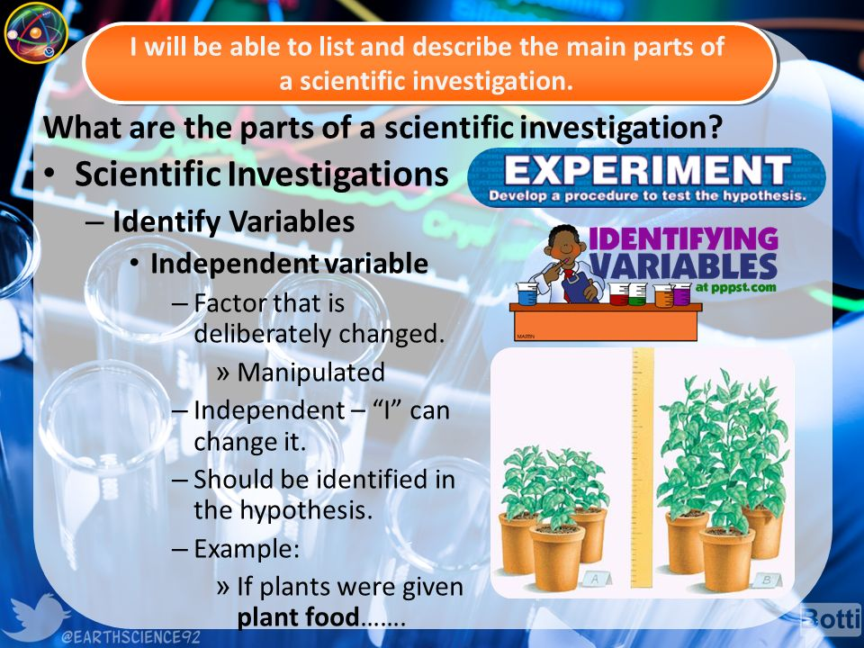 What are the parts of a scientific investigation.