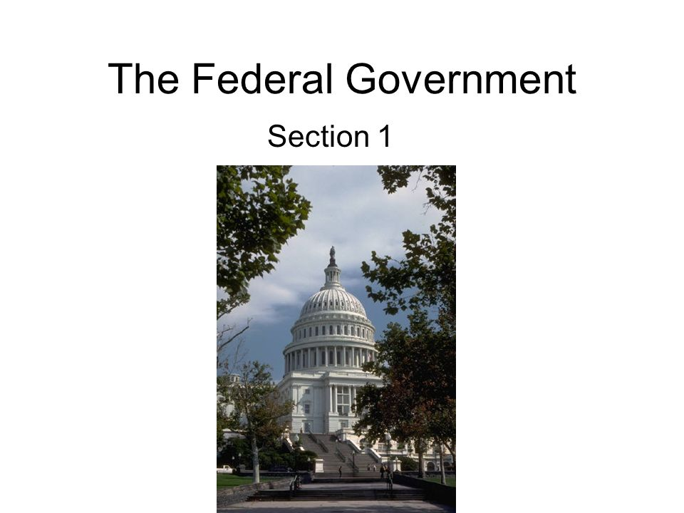 The Federal Government Section 1