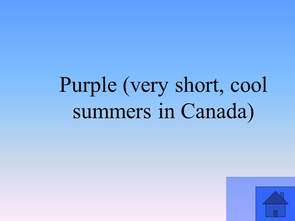 Purple (very short, cool summers in Canada)