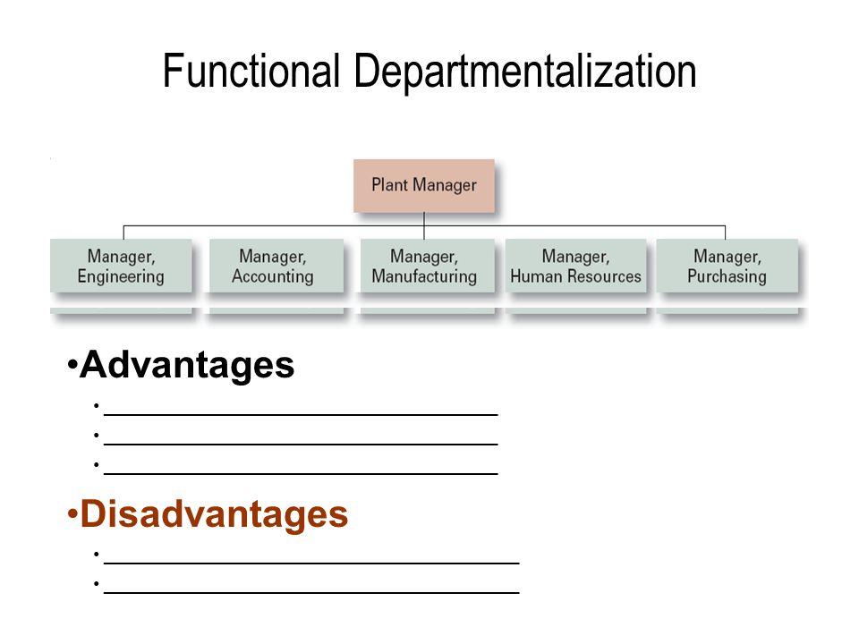 Functional Departmentalization Advantages _____________________________________ Disadvantages _______________________________________