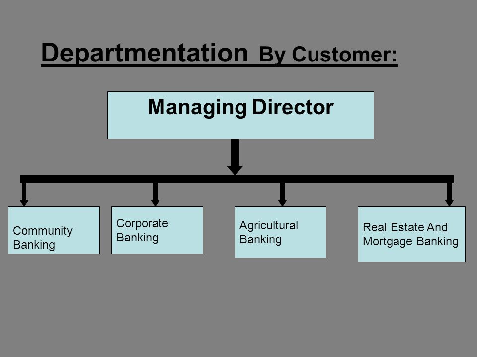 Departmentation By Customer: Managing Director Community Banking Corporate Banking Agricultural Banking Real Estate And Mortgage Banking