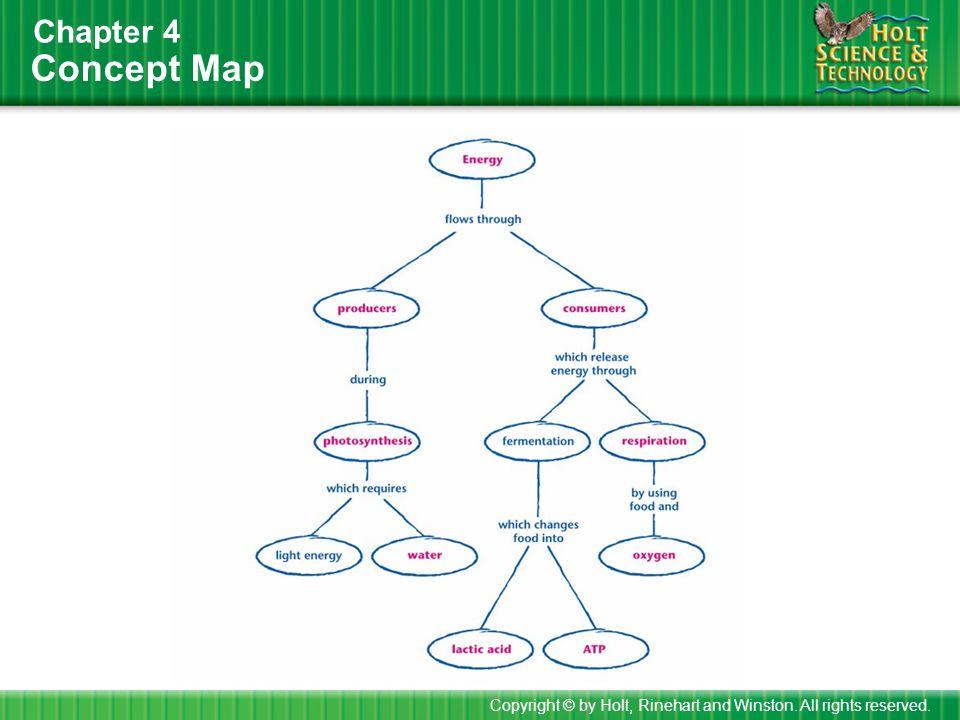 Holt Biology Worksheets Answers Worksheets For School – Holt Biology Worksheets Answers