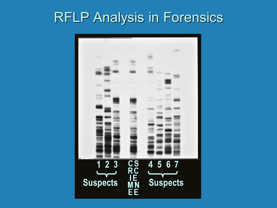 C SR CI EC SR CI EM NE EM NE EC SR CI EC SR CI EM NE EM NE E RFLP Analysis in Forensics 1234567 SuspectsSuspects
