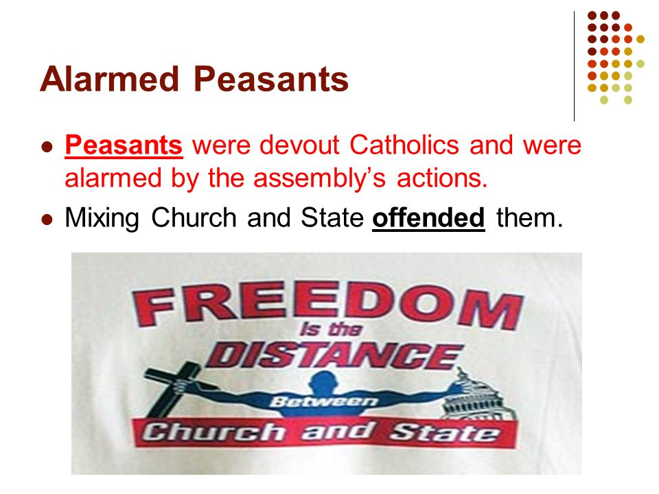 Alarmed Peasants Peasants were devout Catholics and were alarmed by the assembly's actions.