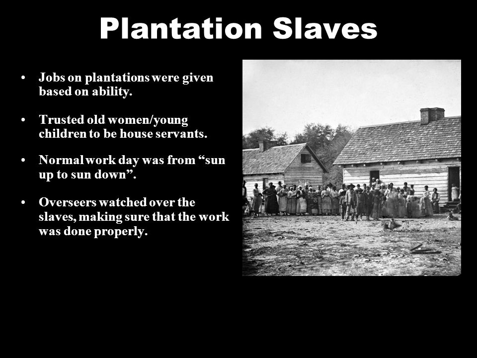 Plantation Slaves Jobs on plantations were given based on ability.