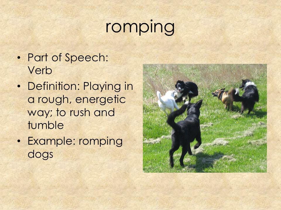 7 Romping Part Of Speech: Verb Definition: Playing In A Rough, Energetic  Way; To Rush And Tumble Example: Romping Dogs