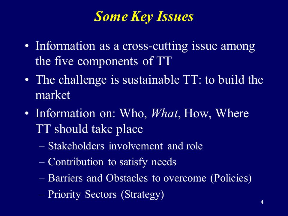 4 Some Key Issues Information as a cross-cutting issue among the five components of TT The challenge is sustainable TT: to build the market Information on: Who, What, How, Where TT should take place –Stakeholders involvement and role –Contribution to satisfy needs –Barriers and Obstacles to overcome (Policies) –Priority Sectors (Strategy)