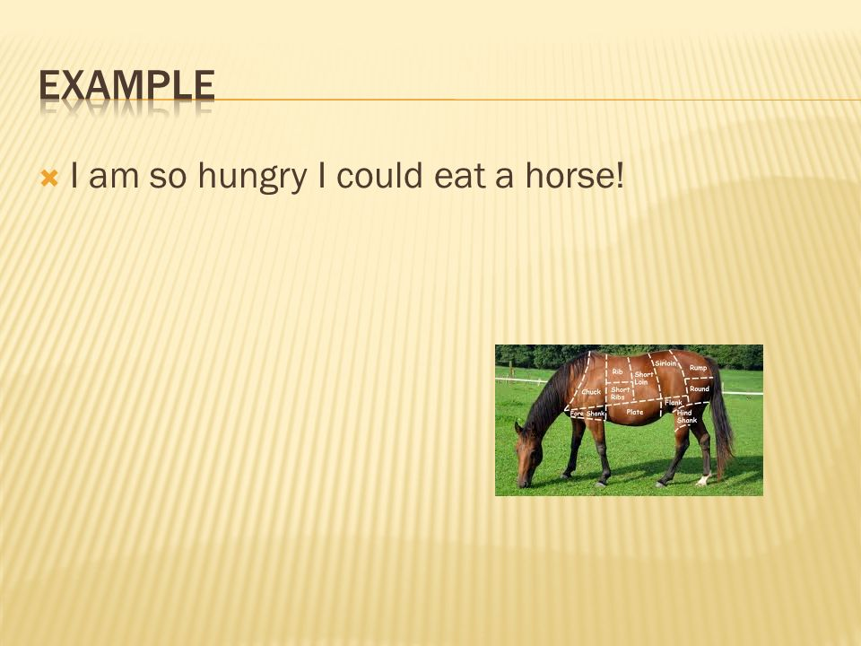  I am so hungry I could eat a horse!