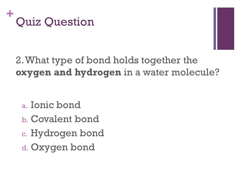 + Quiz Question 2. What type of bond holds together the oxygen and hydrogen in a water molecule.