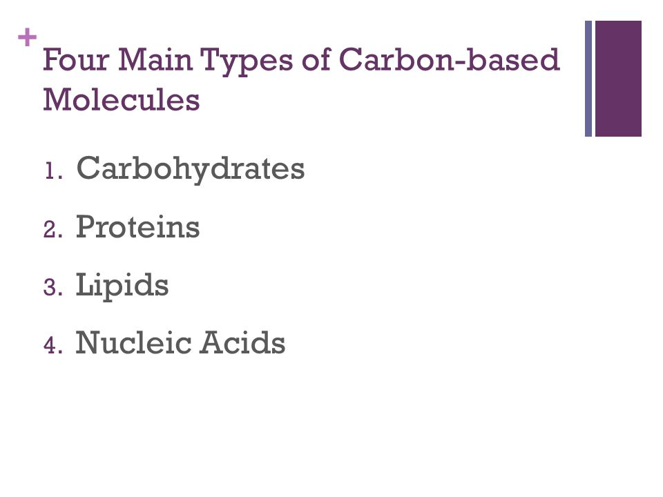 + Four Main Types of Carbon-based Molecules 1. Carbohydrates 2. Proteins 3. Lipids 4. Nucleic Acids