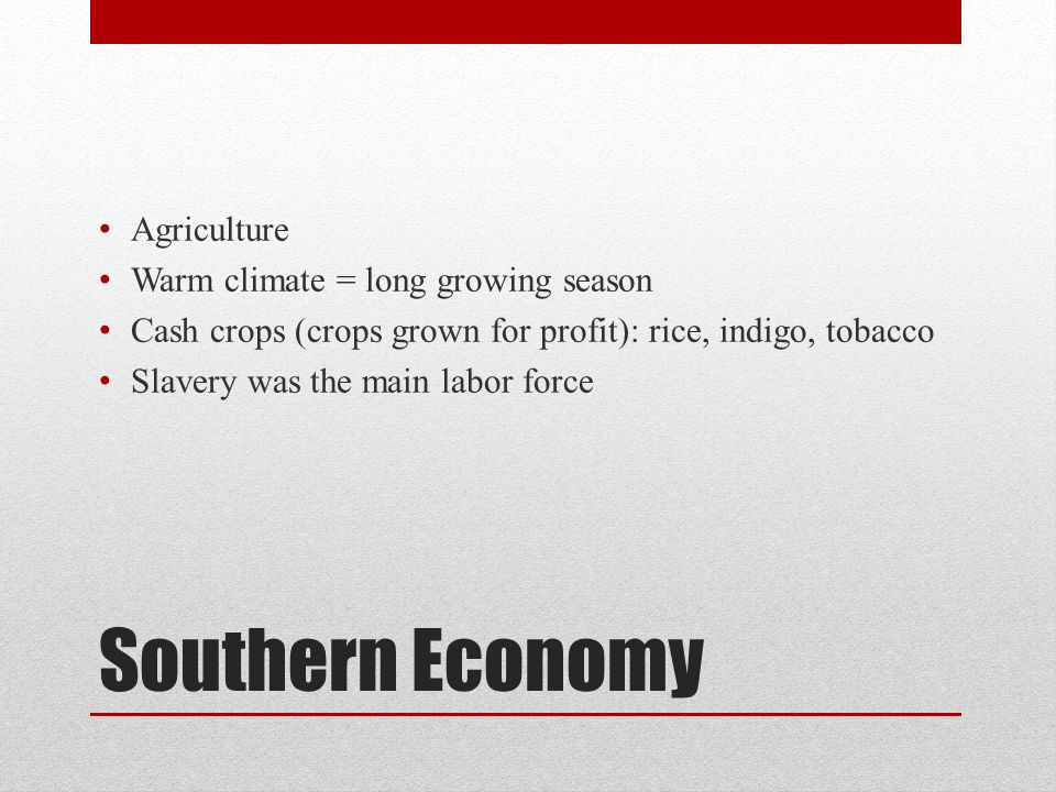 Southern Economy Agriculture Warm climate = long growing season Cash crops (crops grown for profit): rice, indigo, tobacco Slavery was the main labor force