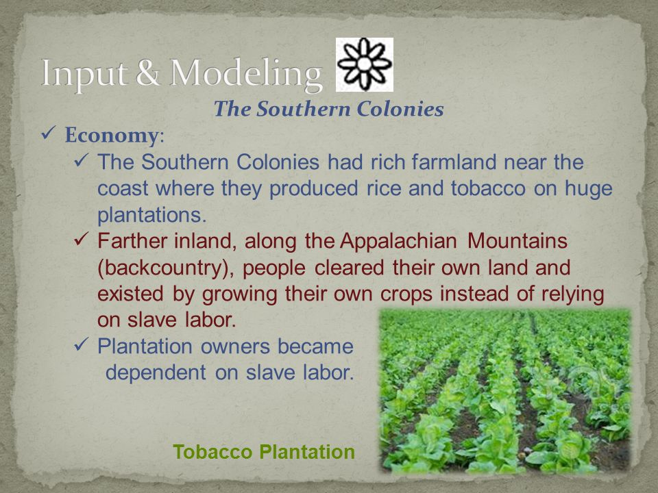 The Southern Colonies Economy: The Southern Colonies had rich farmland near the coast where they produced rice and tobacco on huge plantations.